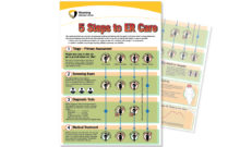 "5 Steps to ER Care"" poster"